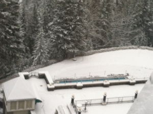 Can you see the outdoor pool? Some crazy scientists were rolling in the snow and then jumping in...idiots.